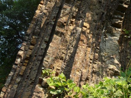 海陽町 化石漣痕 1