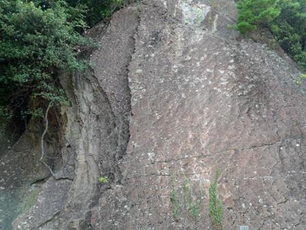 海陽町 化石漣痕 2