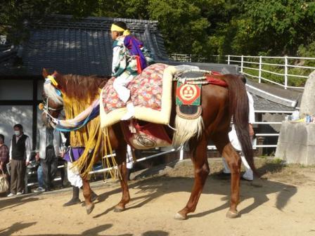 菊間祭り お供馬 6
