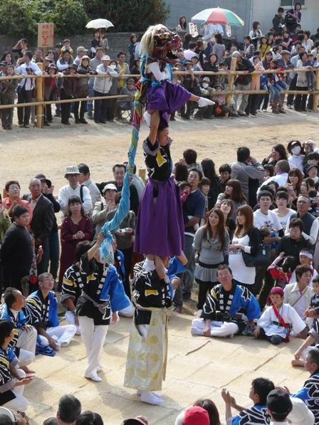 菊間祭り 獅子舞 12