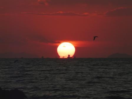 鴨池海岸 夕景 6