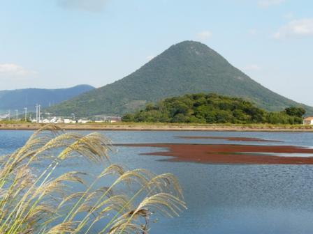 宮池 飯野山 3