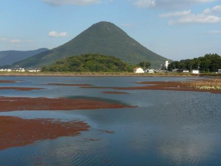 宮池 飯野山 2