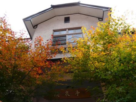 面河渓 紅葉 1