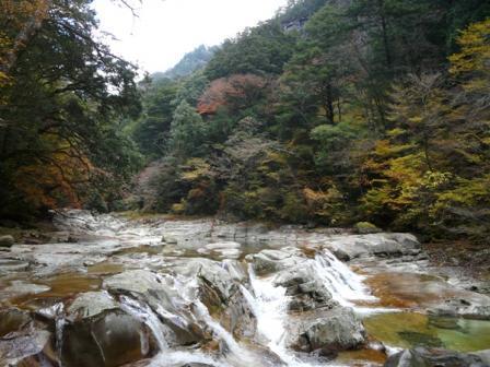 面河渓 紅葉 2