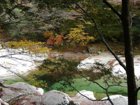 面河渓 紅葉 4