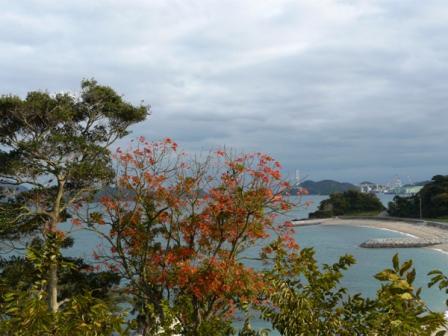 大角海浜公園 7