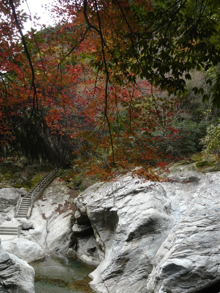 中津渓谷 2