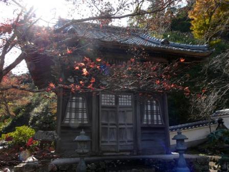 佐川町 青源寺 3