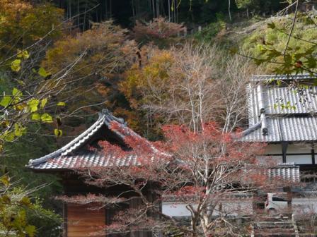 佐川町 青源寺 4