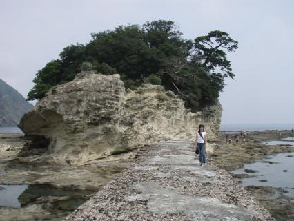竜宮島001