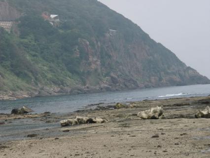 竜宮島002