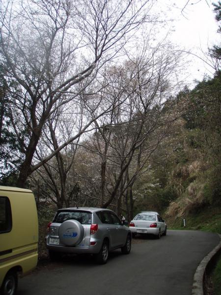 城山上部エリア駐車可能場所2