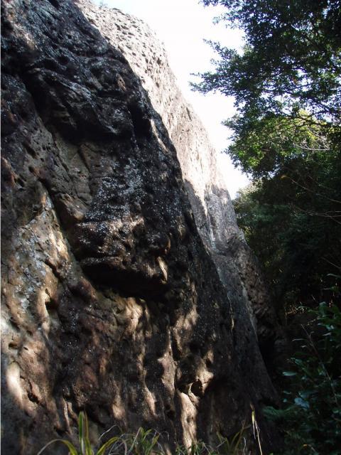 城山ライオンボトムの奥側の壁