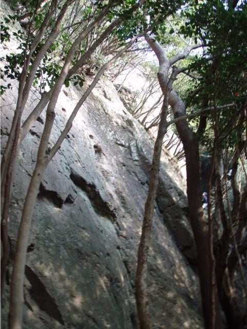 城山ひよこ岩