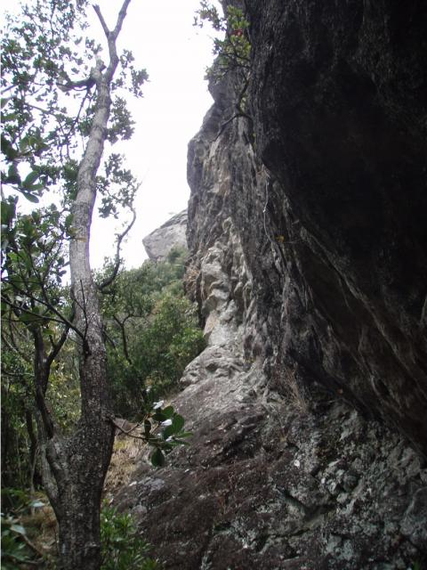 城山ミッドウェーウォール壁の基部
