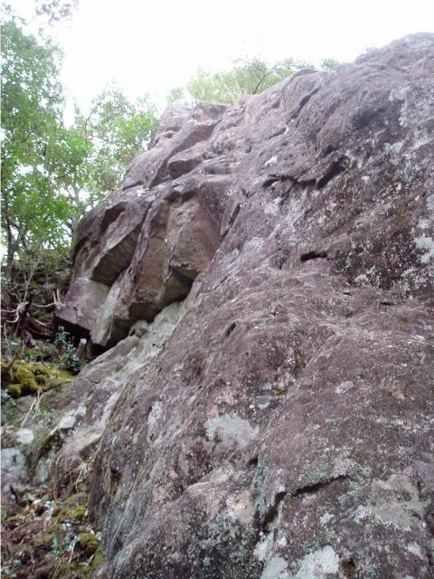 城山ポンポコランドのポコ岩復活の左側面