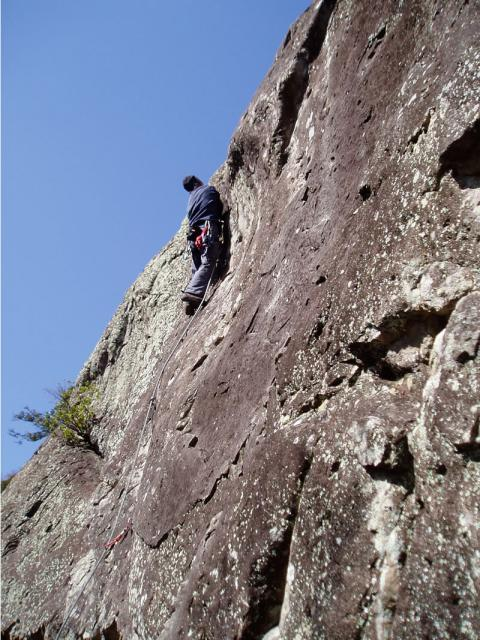 城山フレンチフェイスブラウンシュガーを登る