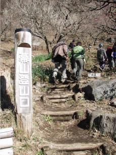 湯河原幕岩環境保全活動で岩場へ向かう人達