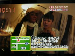 テレビ・kotonoyaさん