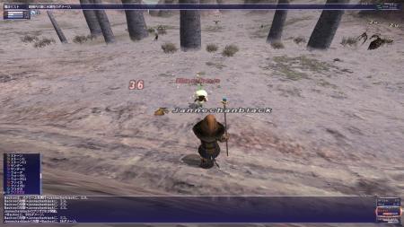 SS20100214-Backoo.jpg