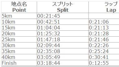 東京マラソン2010ラップ
