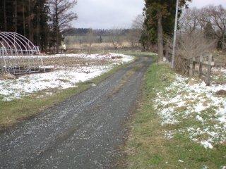 2010県南ロード2