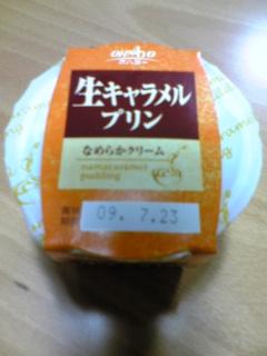 039_20090721220115.jpg