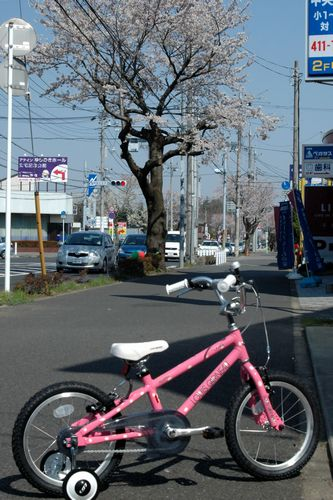 2012-04-09.jpg