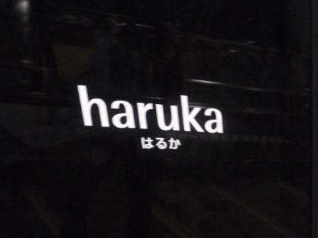 201111mt,sarakura015
