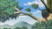 第5話 『約束の樹』3-3.flv_000187145