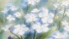 Aoihana ep11F_001289871