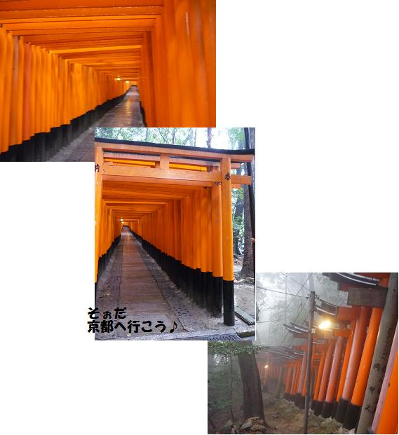 P1010825-1.jpg