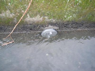 水口の掃除口