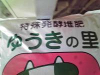 F1000004_20091113224446.jpg