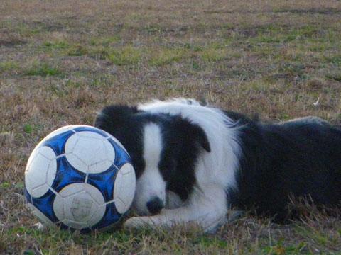 サッカーボール遊び