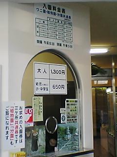 20061129111255