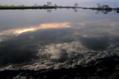 福島潟 YS0_5894.