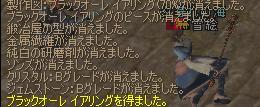 13mar2005_4.jpg