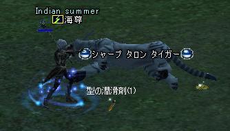 20050218165604.jpg