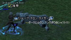 20050218165609.jpg