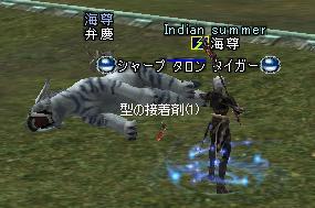 20050221204116.jpg