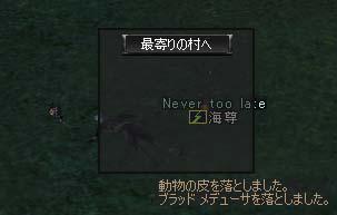 27feb2005_2.jpg