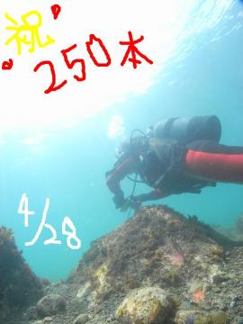 M1077051.jpg
