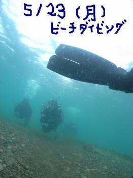 M1077813.jpg