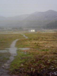 yuki2008