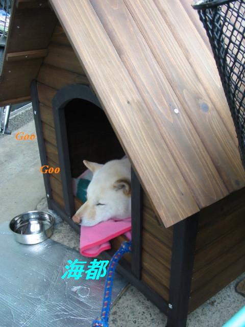 kaitohouse2.jpg