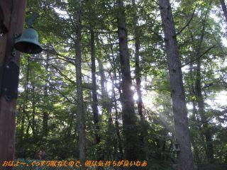 ss-kaitotabiinu17.jpg