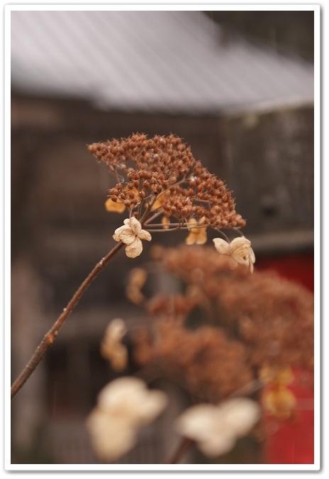 2010・1・12 榛名神社 加工1