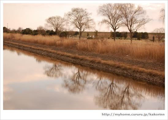 2009・8・21~12月の写真 146